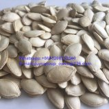 Семена тыквы кожи Shine здоровой еды