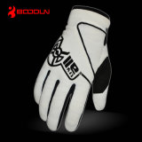 Sale caldo Best Motorcycle Gloves, Motorbike Gloves con Low Price