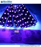 12VDC 60LEDs 미터 5050SMD UV LED 지구