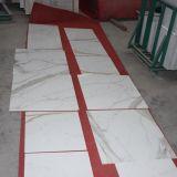 Disegni di marmo delle mattonelle di Calacatta della porcellana, mattonelle di marmo bianche Polished della porcellana