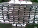 Reine Zink-Barren für Gussteil-/Zink-Barren 99.995%