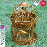 POT di fiore d'attaccatura dorato della gabbia di uccello del ferro di colore
