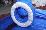 1つの凍結する膨脹可能な跳躍の城コンボChb724に付き8つ