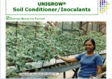 Unigrow Schmutz-Düngemittel für irgendein Blatt-/Melone-Gemüsepflanzen