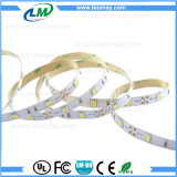 SMD 5050 tira flexible de la luz LED de 30 LEDs/M