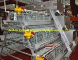 Sales caliente para Layer Cages