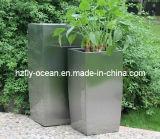 De Pot van de Bloem van het roestvrij staal verminderde de Vierkante Container van de Bloem