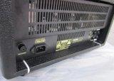 Cabeça 25With10W do amplificador da guitarra da câmara de ar com gabinete de madeira