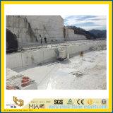 WallおよびFlooringのための中国のCastro White Marble Slab