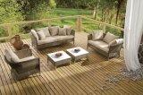 Салона Мартиника патио сада патио ротанга мебель напольного Wicker установленная (J629)