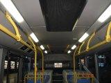 Illumination de chariot de véhicule (XY-2807)