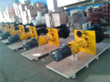 채광 원심 펌프 100RV - Sp 수직 슬러리 펌프