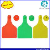 Grüne große Tierohr-Marken der Farben-TPU