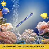 Wasserdichtes DC12V DC24V RGB blaues Aquarium-Licht des Weiß-54W LED