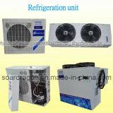 Almacén de enfriamiento de la conservación en cámara frigorífica de los vehículos