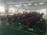 Señora Longwise Electric Bike de la ciudad del modelo nuevo