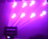 8*10W RGBW 4in1 LED 이동하는 맨 위 거미 광속 빛 무한한 겹켜