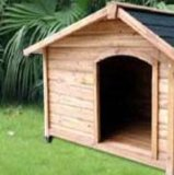 Casa de madeira do animal de estimação do canil do cão ao ar livre do jardim