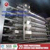 Het Leggen van de kip Kooi met Ventilatie en Verwarmingssysteem (a-3L90)