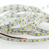 Tira morna do diodo emissor de luz do branco SMD3528 120LEDs/M