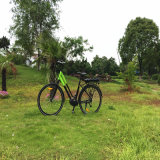 700cc中間駆動機構の電気都市Bike