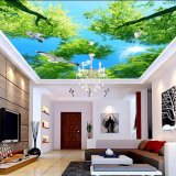 Film mou de PVC de Decortive de divers de modèle plafond moderne de Chambre