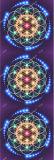 Multi напечатанная цветом циновка Pilate йоги с мешком йоги планки йоги