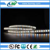 Strisce di alta tensione LED di SMD2835 120LEDs/m (IP67 impermeabilizzano)
