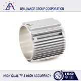 Fábrica del OEM hizo el proceso de fundición a presión de aluminio (SY0246)