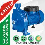 elektrisch betriebene saubere zentrifugale Wasser-Pumpe des einphasig-110V/220V
