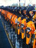 Élévateur manuel/levage de poulie à chaînes de 6 tonnes fait à la machine en Chine