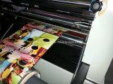 Máquina que lamina a base de agua de la ventana manual para el papel con el orificio