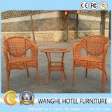 Solo conjunto de la silla de la rota del diseño antiguo chino
