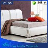중국에서 현대 디자인 낮은 침대