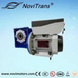 motor servo del control de velocidad de la CA 3kw (YVF-100B/D)