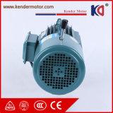Motor assíncrono elétrico trifásico da C.A. do ferro