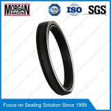 Высокий тип кольцо Spgw давления/Phd уплотнения поршеня гидровлического цилиндра