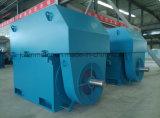 Grande/motor assíncrono 3-Phase de alta tensão de tamanho médio Yrkk5006-8-400kw do anel deslizante de rotor de ferida