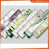 Belle peinture de mur de bâti d'horizontal pour la tenture à la maison de décoration