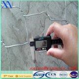 Gabion熱い浸された電流を通されたボックス(XA-FM018)