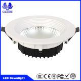 Plafonnier du voyant du support DEL de surface du nouveau produit 30W/DEL Downlight/DEL