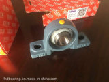 Fkd / Fe / Hhb 2 Hole Pillow Block Bearing / Bearing Units (UCP206)