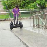Motorino elettrico poco costoso del vagone per il trasporto dei lingotti elettrico elettrico del pattino del vagabondo del vento