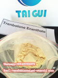 Tren líquido Injectable E/Trenbolone Enanthate