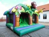 Bouncer gonfiabile di salto del castello rimbalzante del castello