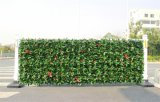Заводы высокого качества искусственние и цветки зеленой стены Gu-Wall1023155910