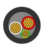 50 câble d'alimentation à plusieurs noyaux d'isolation du sqmm XLPE 0.6/1 kilovolt