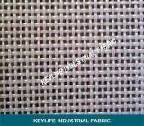 Weave normale Polyester Wire Mesh per Filtration di Industrial Liquids