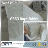 優雅な内部のフロアーリングの装飾のためのインポートされた白い花こう岩の床タイル
