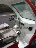 Venda quente interna/miúdos ao ar livre do uso que jogam o caminhão (RSD-T11)
